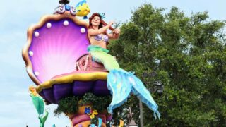 Meet Ariel at Her Grotto