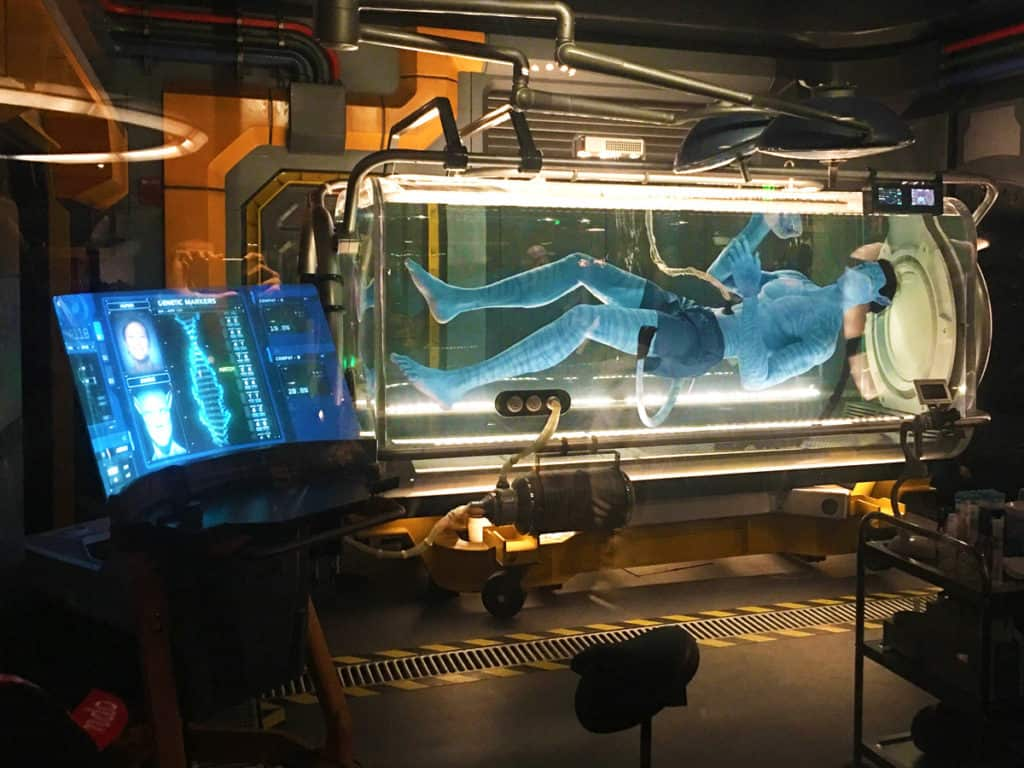 Avatar Flight of Passage Queue Scenery