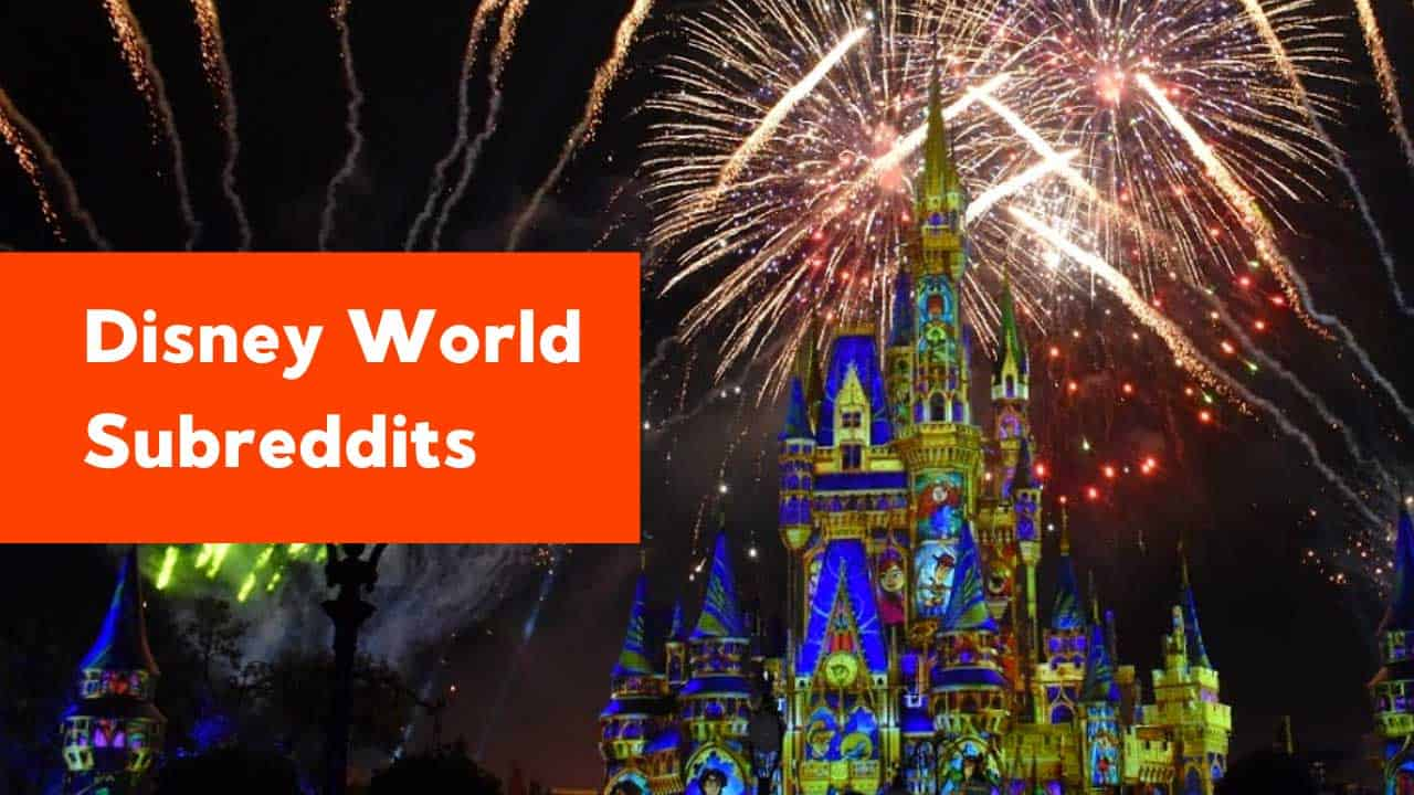 12 Disney World Subreddits to Follow