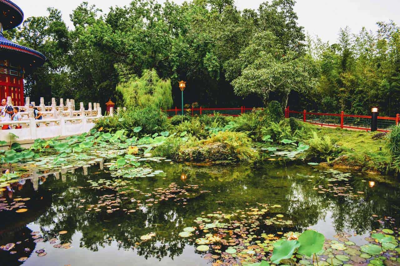 2020 Epcot® International Flower & Garden Festival
