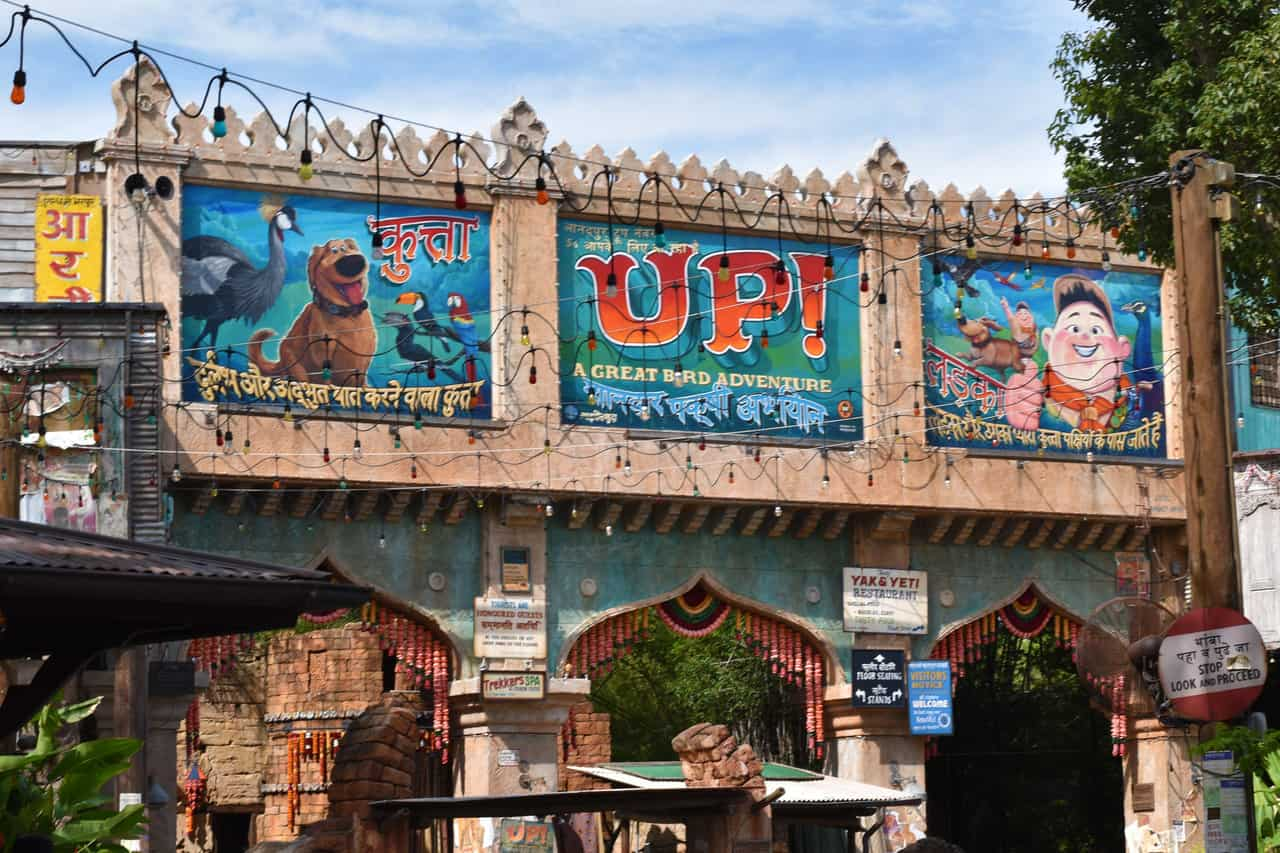 UP! A Great Bird Adventure
