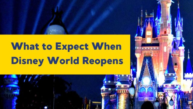 What to Expect When Walt Disney World Reopens