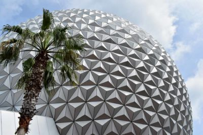 Spaceship Earth-with Palm Tree